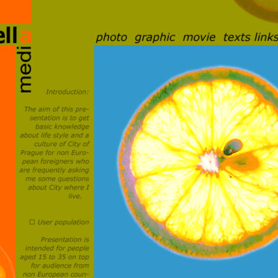 web 2006